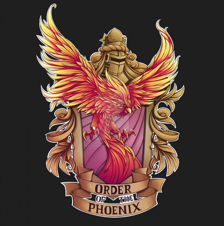 order_of_the_phoenix_by_nikivandermosten-daxa2df.thumb.jpg.71d07bbc4c497c7d45cd606ca7091645.jpg